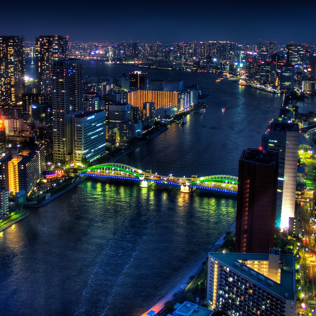 Tokyo Japan at night download wallpapers iPad 1024x1024