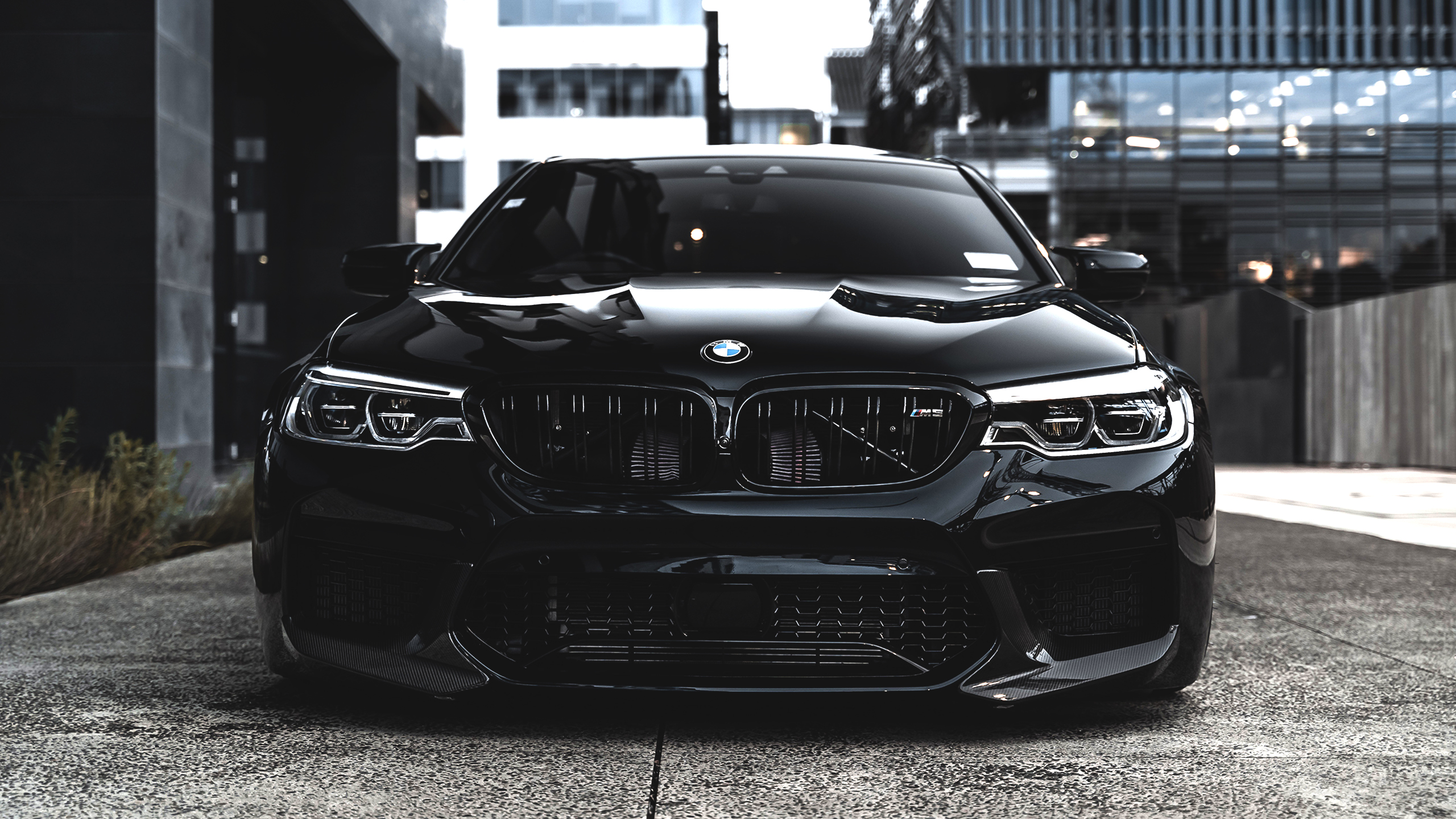 BMW M5 Wallpapers HD Wallpapers 2560x1440