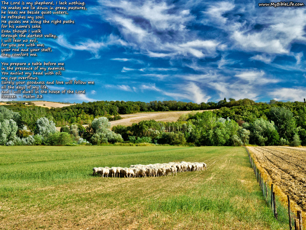 Psalm 23 1024x768