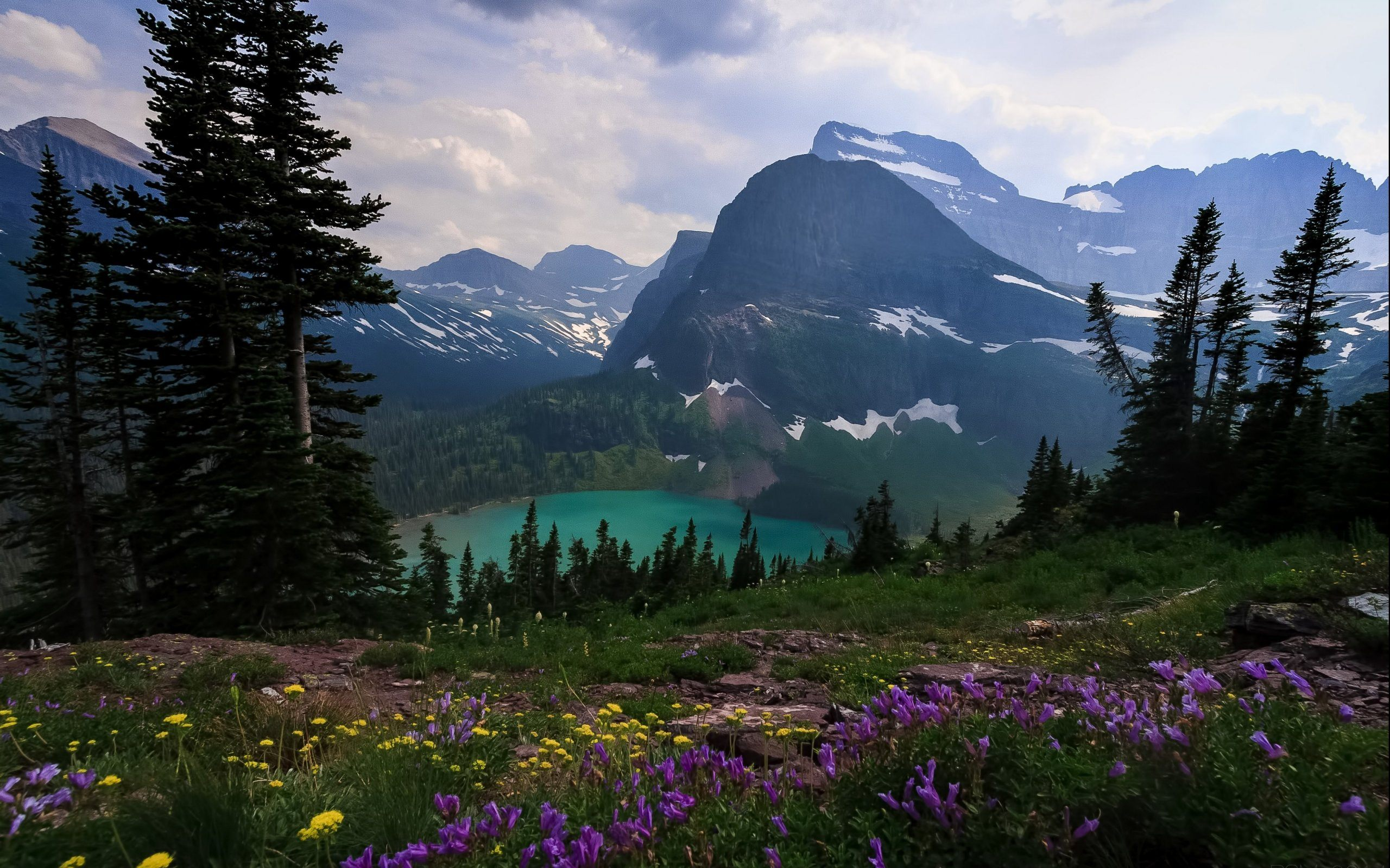 Glacier National Park Wallpaper HD Of Grinnell Glacier Lake 2560x1600