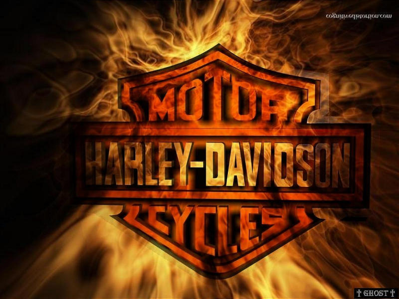 Fired Harley Davidson Wallpaper 800x600