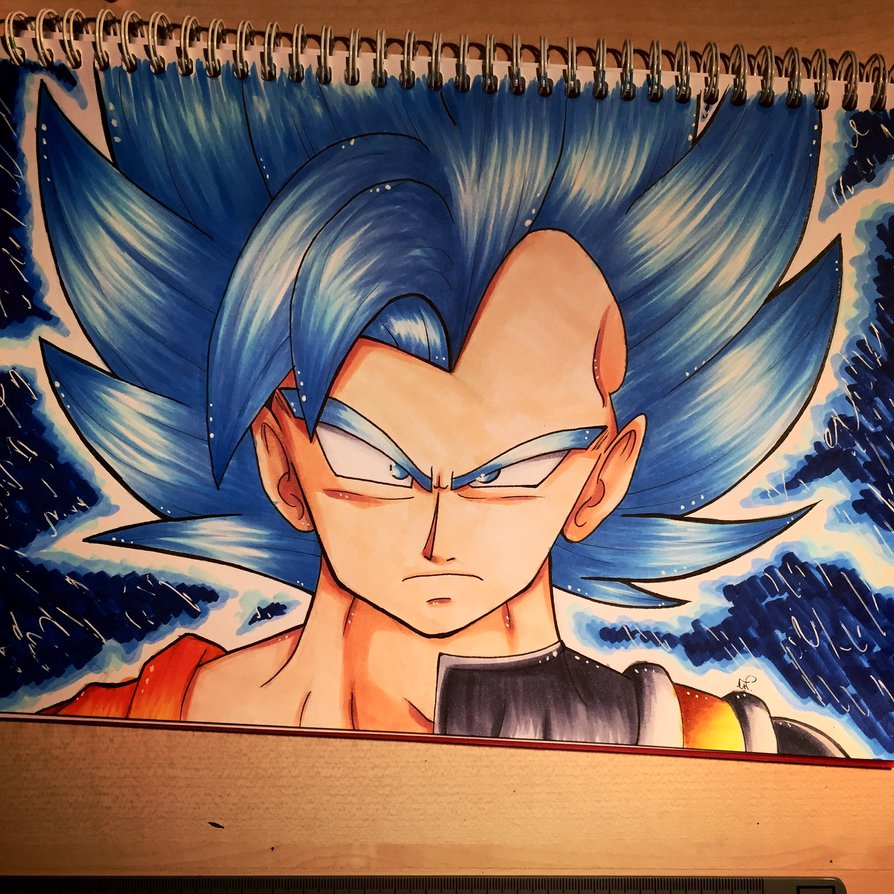 Goku and Vegeta SSGSS by xxMi ChansArtxx 894x894