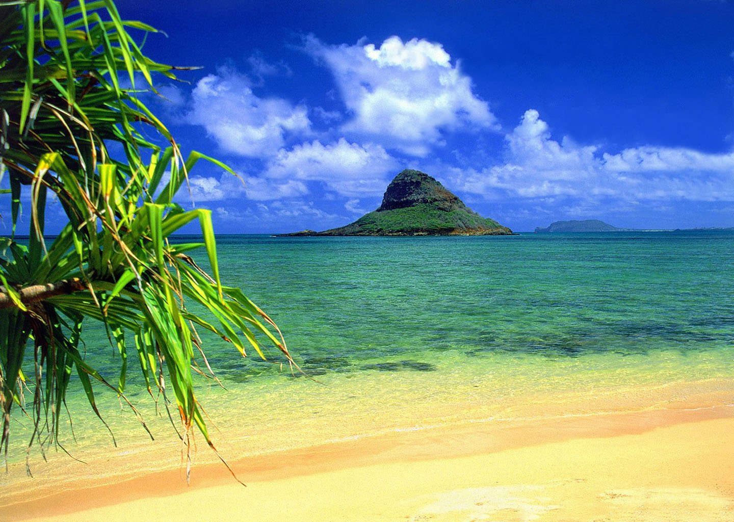 Hawaiian Beach Wallpaper 1440x1024