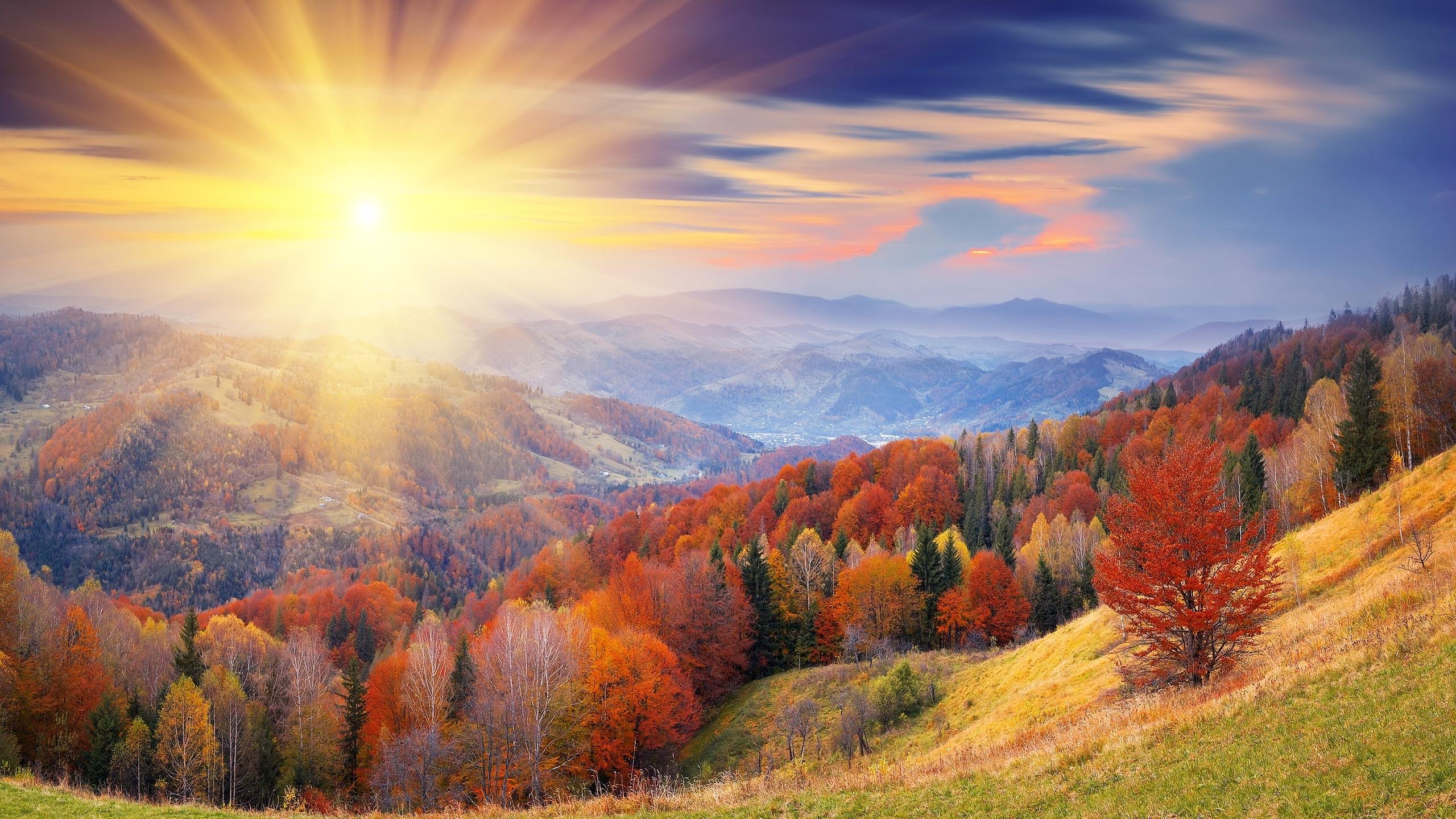 Un paesaggio con sole splendenteextra Wonderful Earth 2560x1440