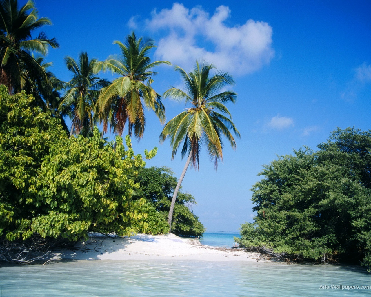 Hd Tropical Island Beach Paradise Wallpapers And Backgrounds: Tropical Island Paradise Wallpaper