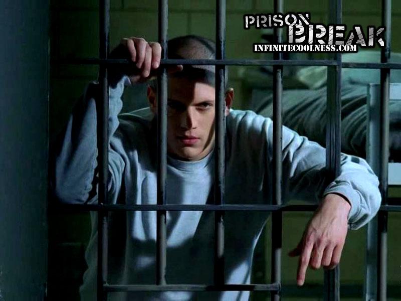 wentworth miller prison break   Wentworth Miller Wallpaper 256377 800x600