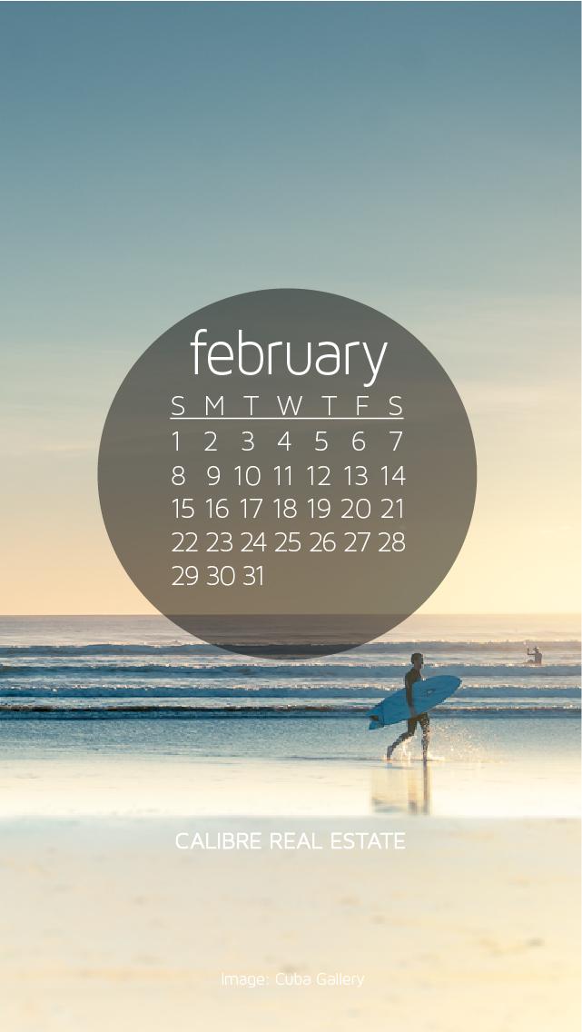 February 2015 Calendar Wallpaper 641x1136
