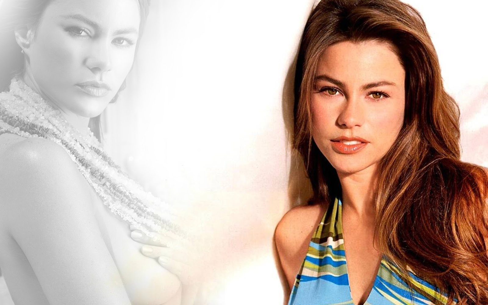 Sofia vergara wallpaper download hd and make this wallpaper for your 1600x1000