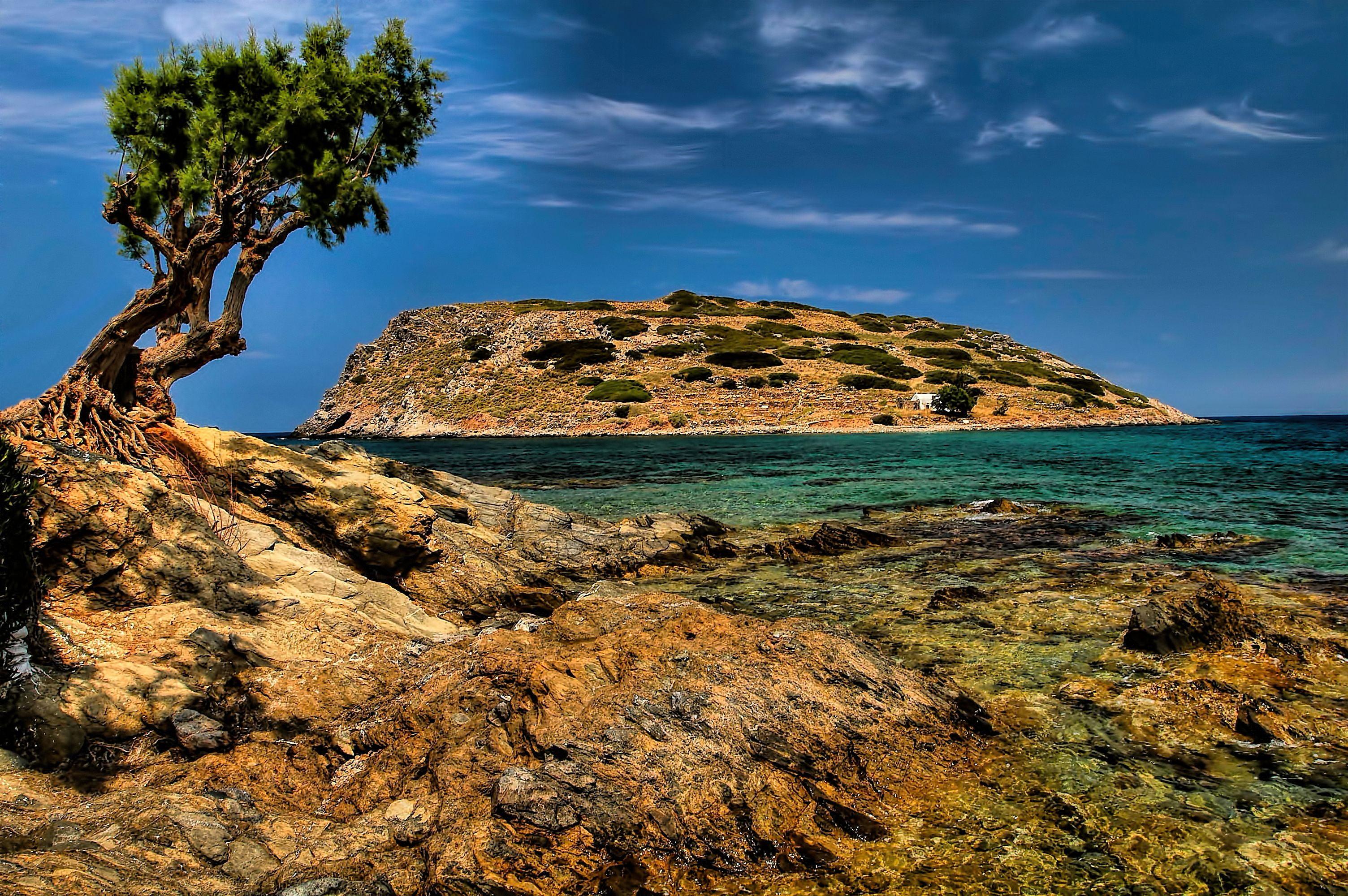 Green leaf tree near body of water mochlos crete HD wallpaper 3008x2000