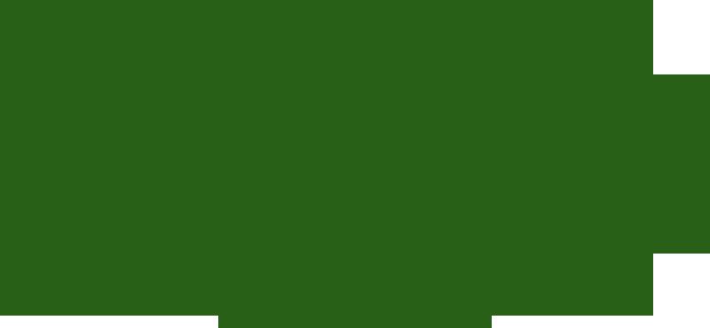 Remington Logo Remington outdoor logo 800x370