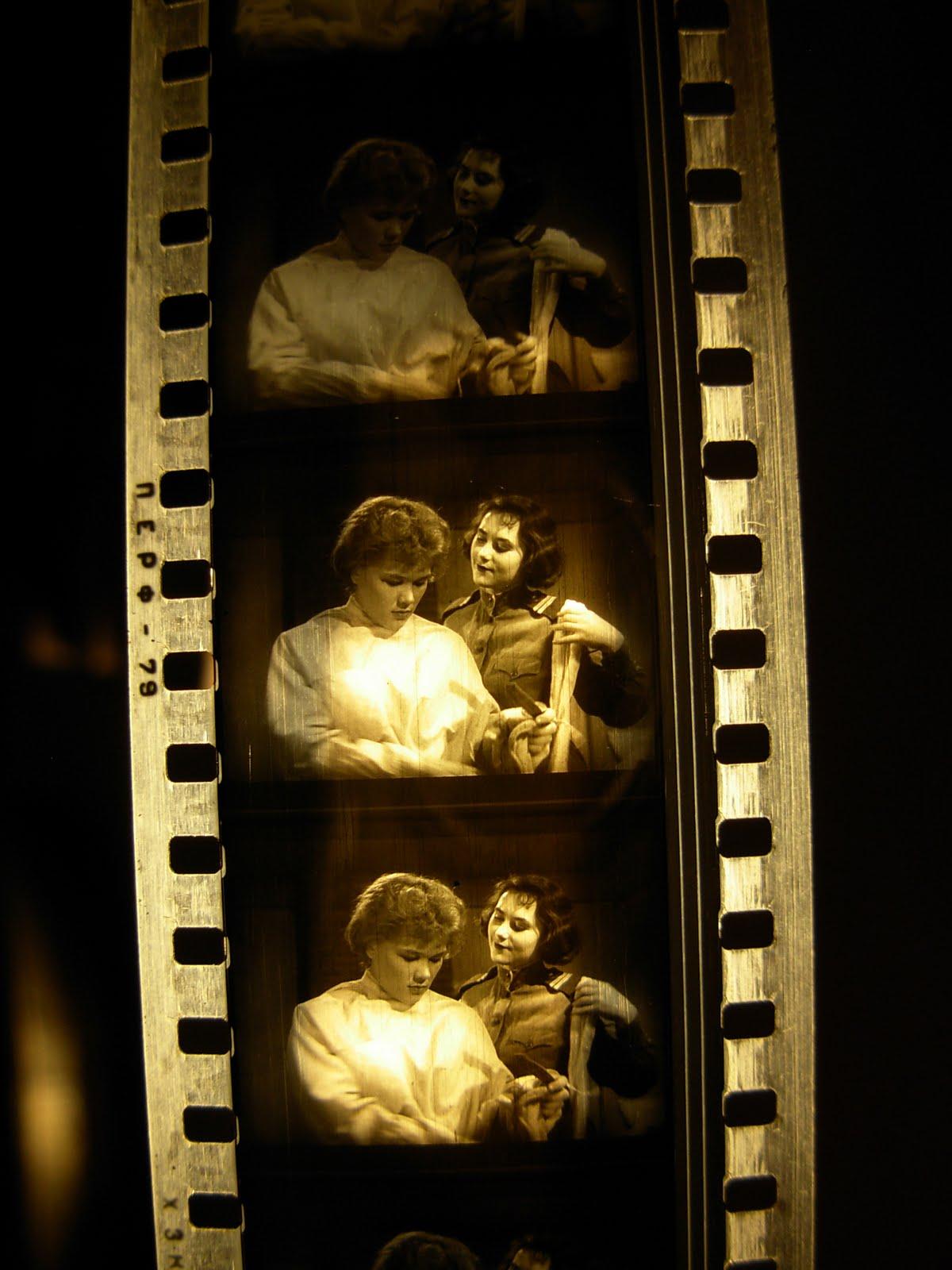 35 Mm Film Wallpaper PicsWallpapercom 1200x1600