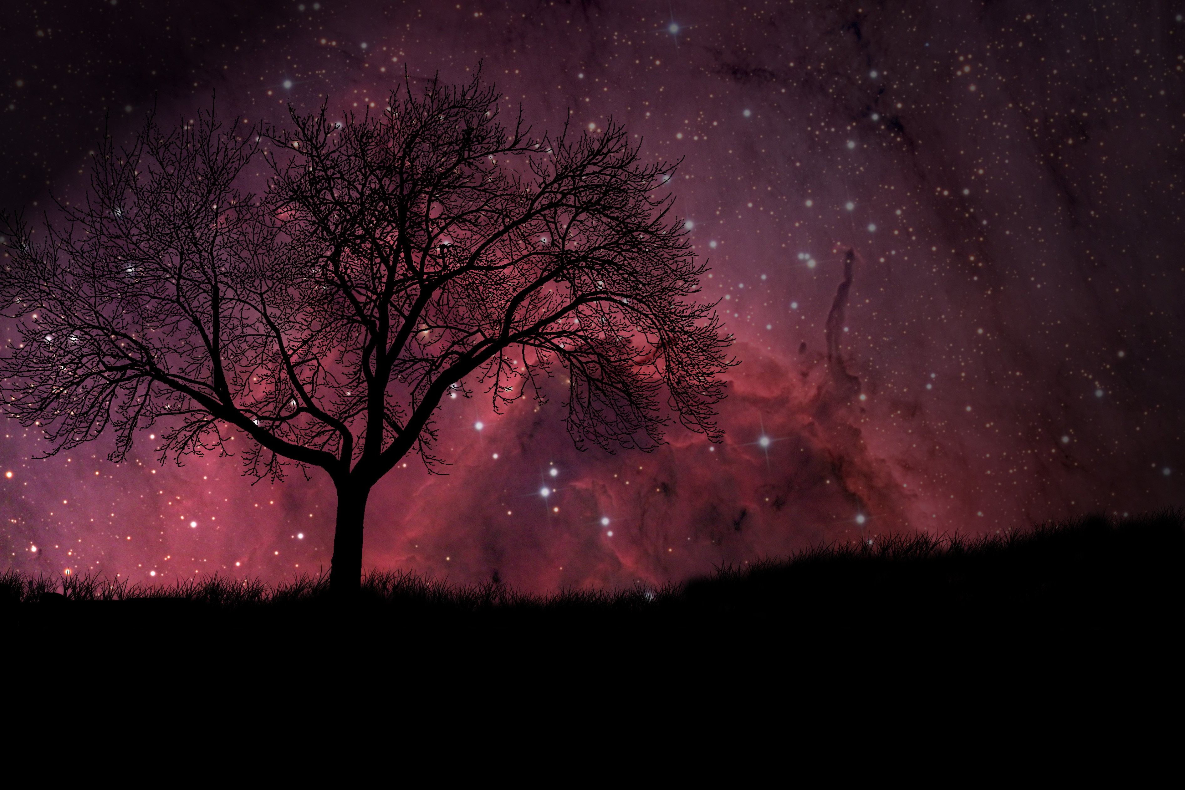 stars hd wallpapers wallpapersafari