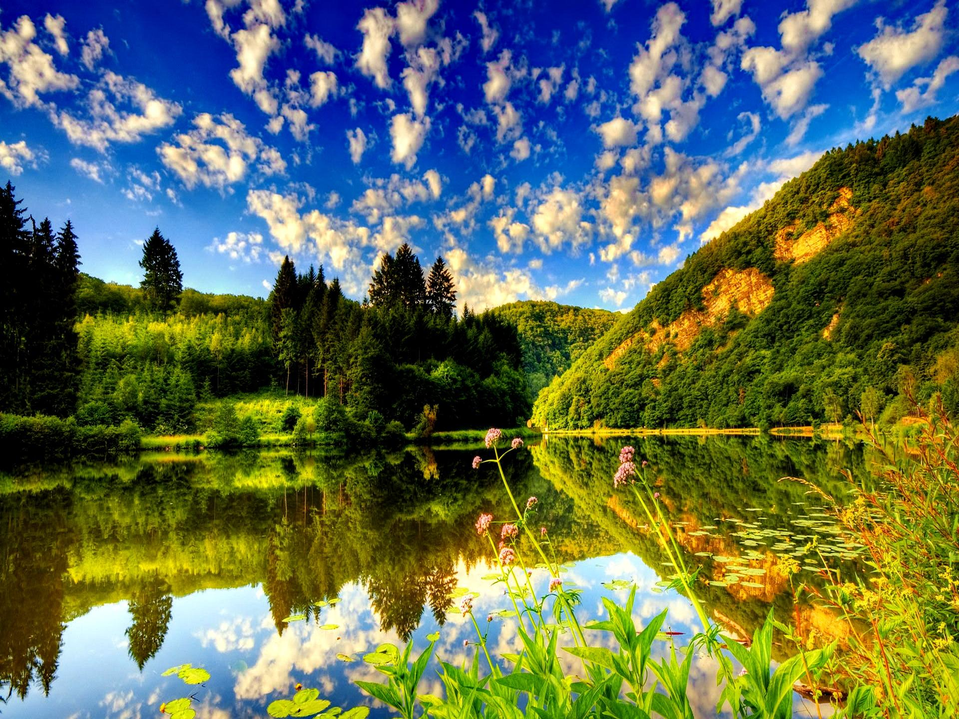 Lake summer nature wallpaper With Resolutions 19201440 Pixel 1920x1440