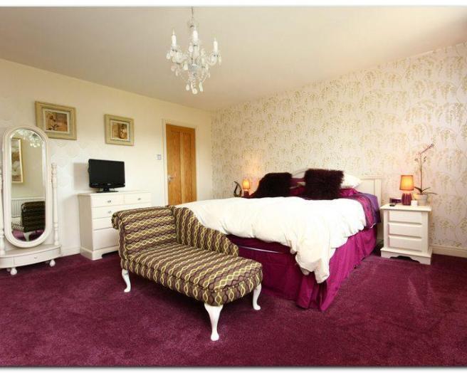 Furry Wallpaper For Bedrooms Photo of purple furry bedroom 656x524