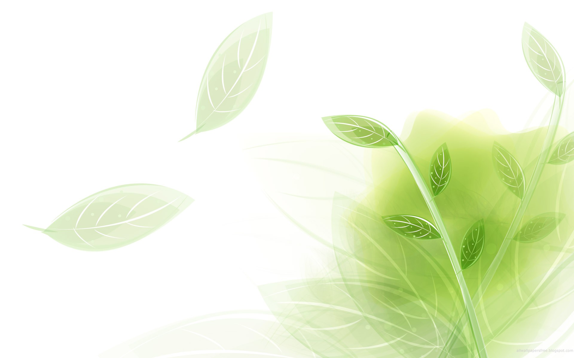 Light Green Wallpaper 1920x1200px 841906 1920x1200