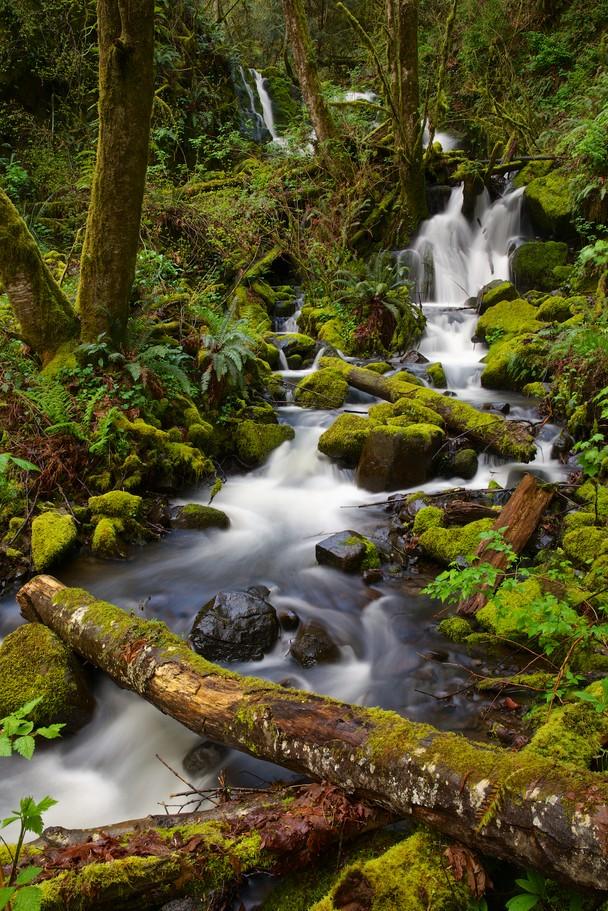 Spring Cascade   Traveler Photo Contest 2013   National Geographic 608x911