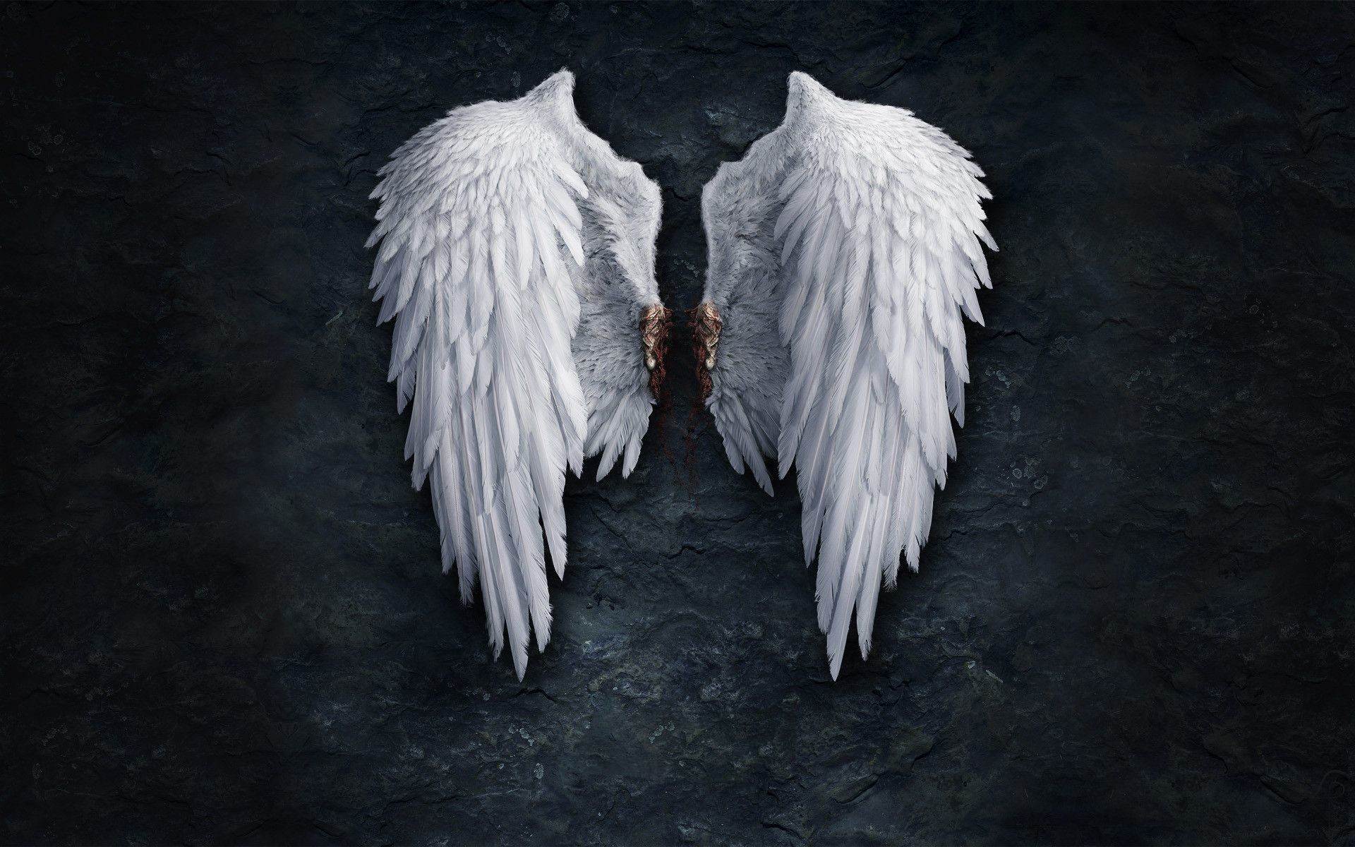 Angel Wings Background 49 images 1920x1200