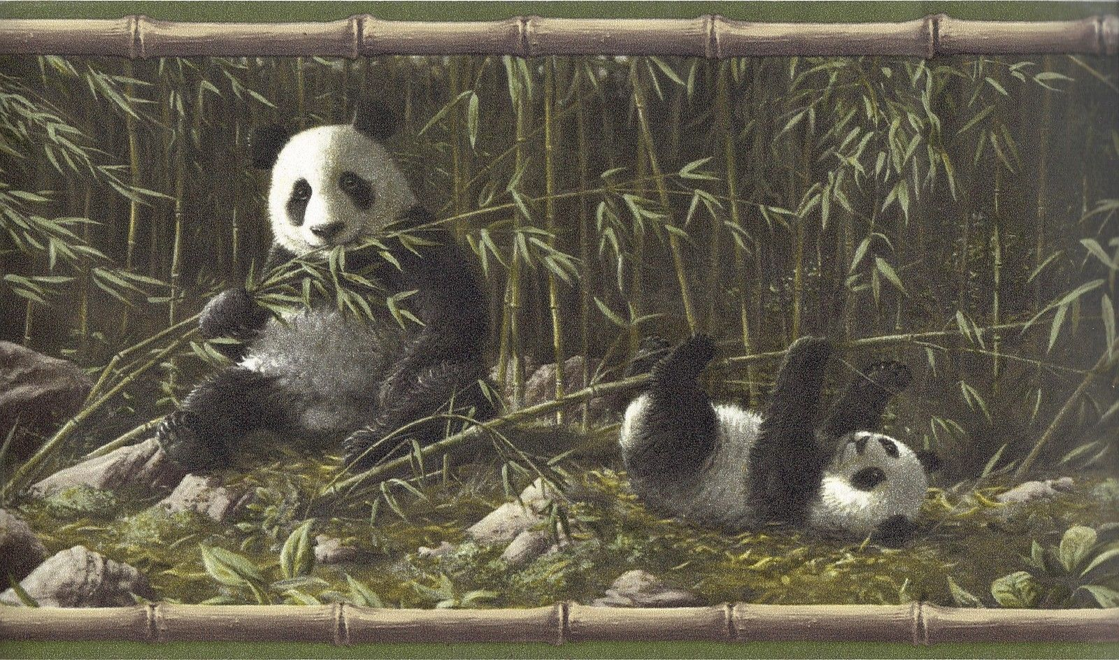 Panda bears bamboo jungle Hautman Brothers wallpaper border green 1600x944