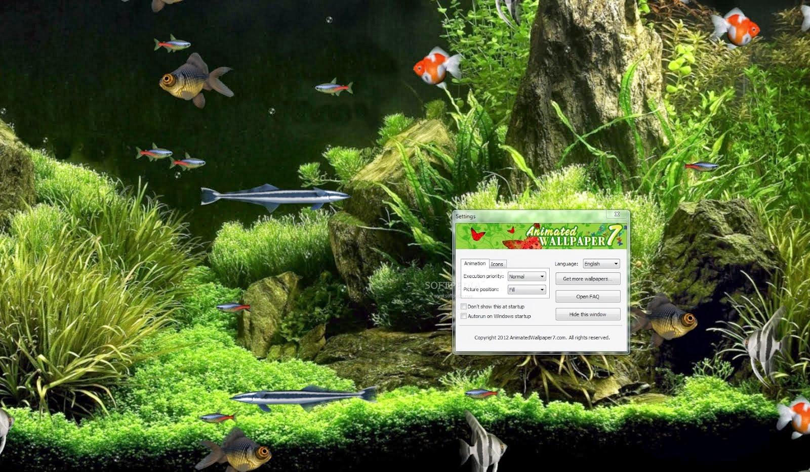 Aquarium Animated Wallpaper Wallpaper Animated 1600x934