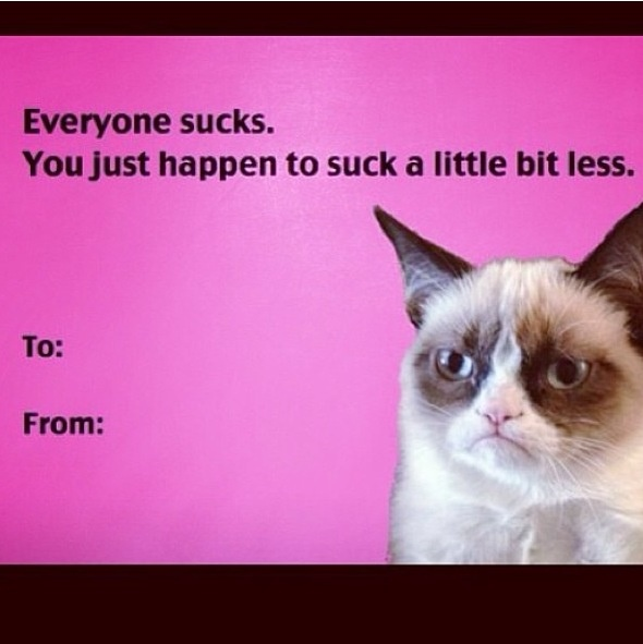 grumpy cat valentine s day this is me all day on valentines MEMES 590x591