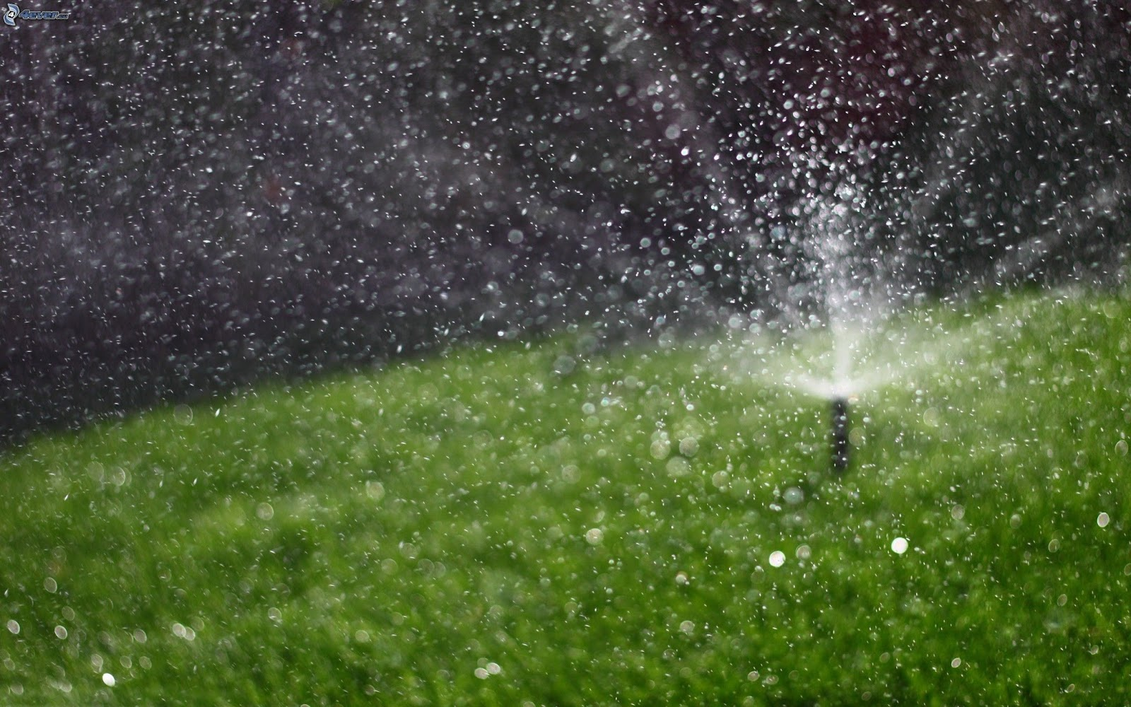 Irrigation Stock PhotosImages Pictures Gallery   hd wallpapers 1600x1000