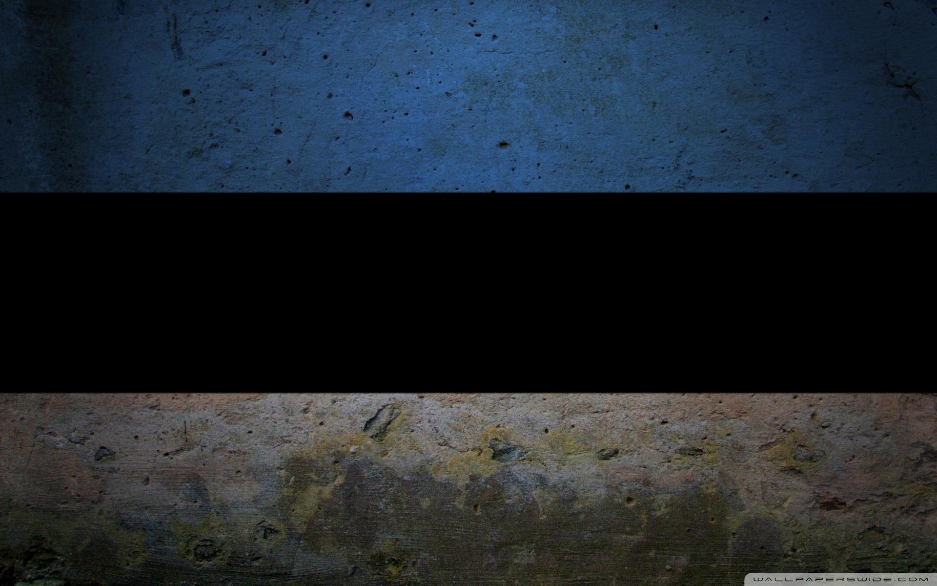 Grunge Flag Of Estonia 4K HD Desktop Wallpaper for 4K Ultra HD 1920x1200