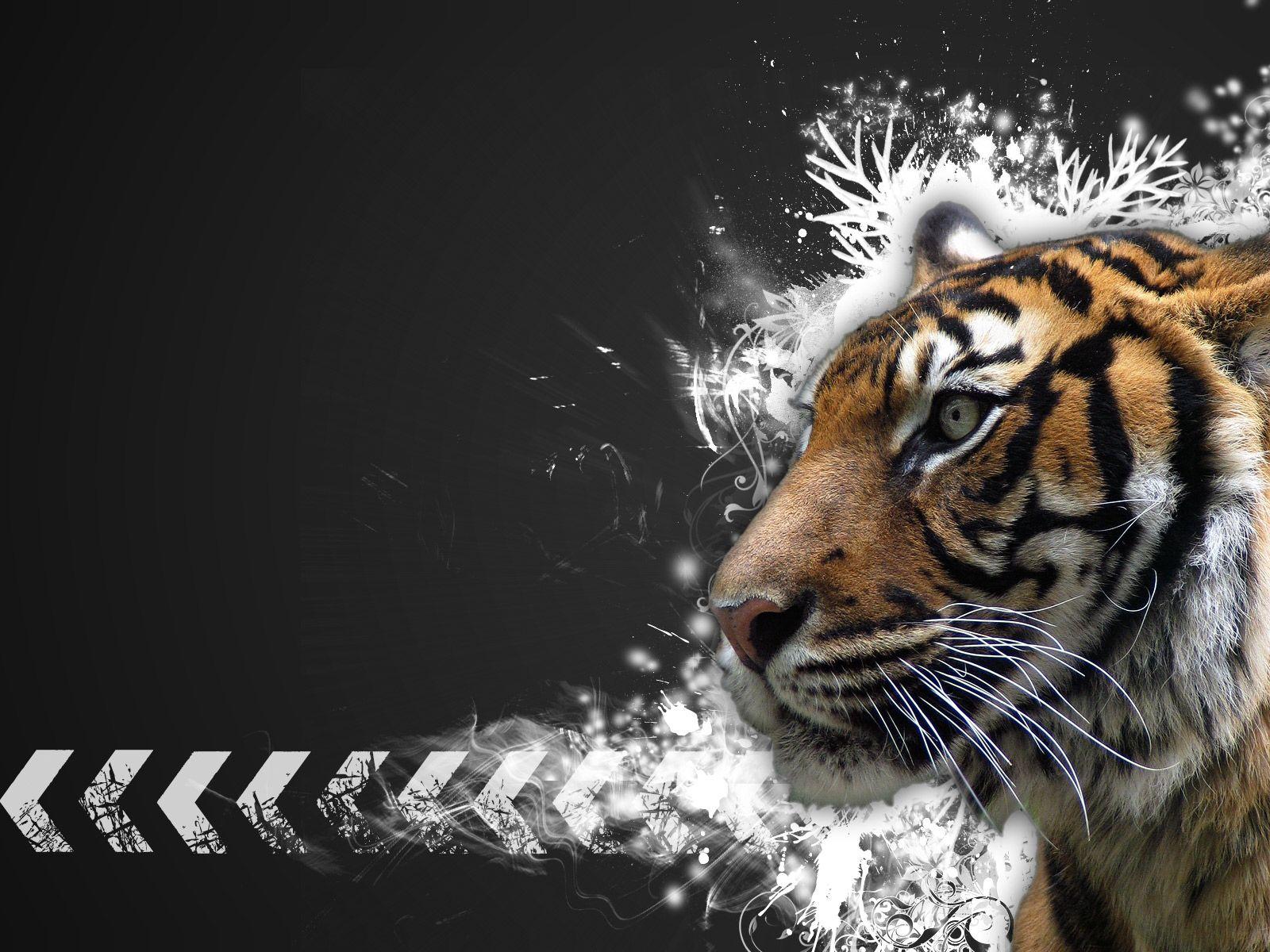 Mac Tiger Wallpaper   Tera Wallpaper 1600x1200