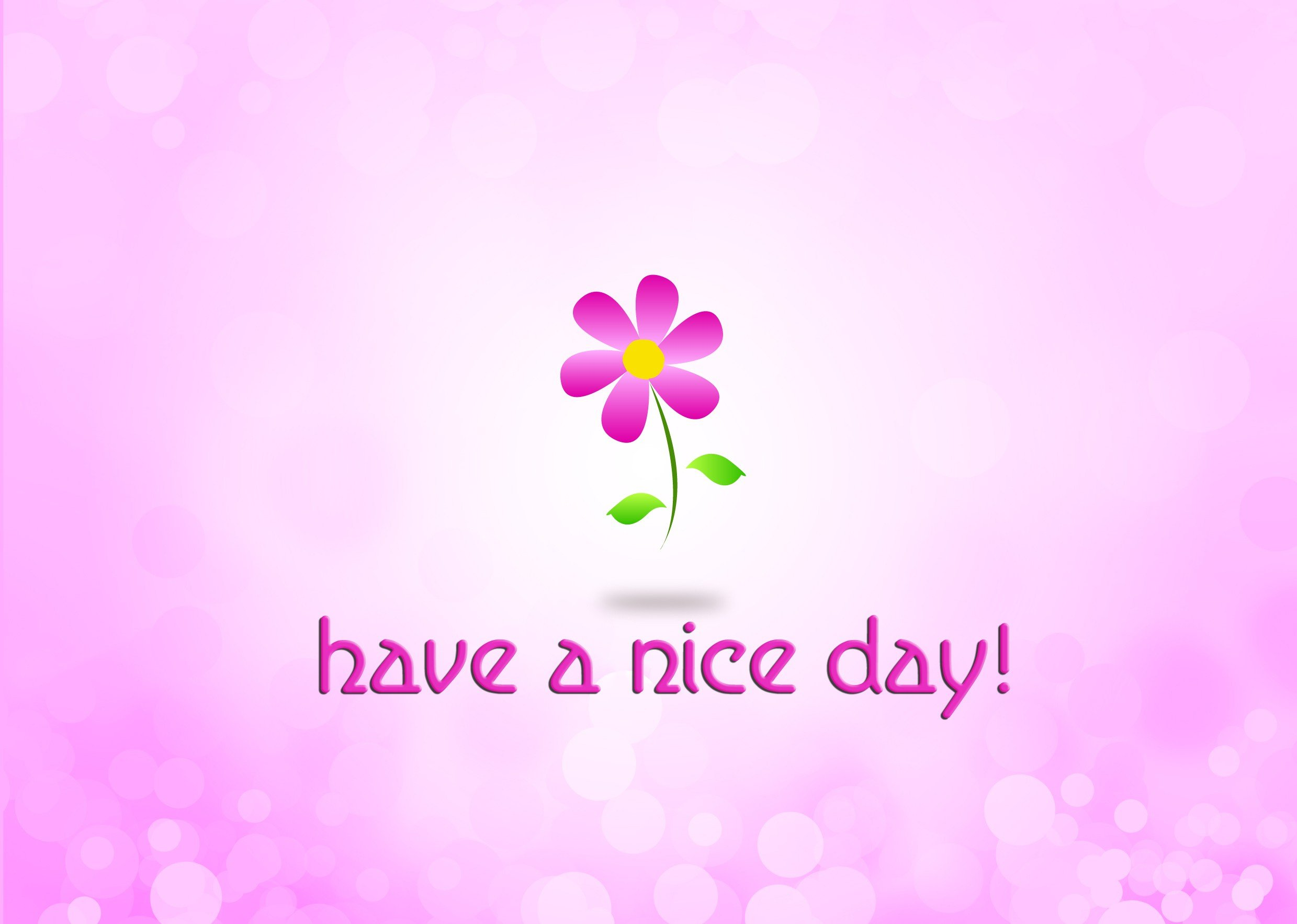 Have A Nice Day Flowers HD Wallpapers | HD Wallpapers