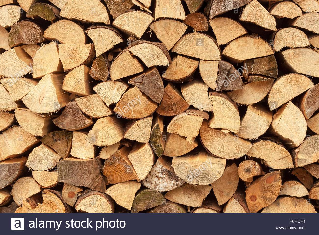 wall firewood Background of dry chopped firewood logs in a pile 1300x956