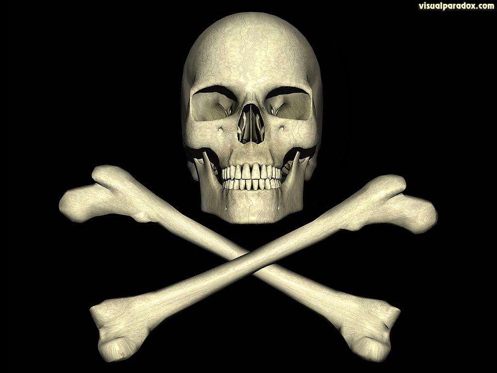lea michele Skulls and crossbones wallpaper 1024x768