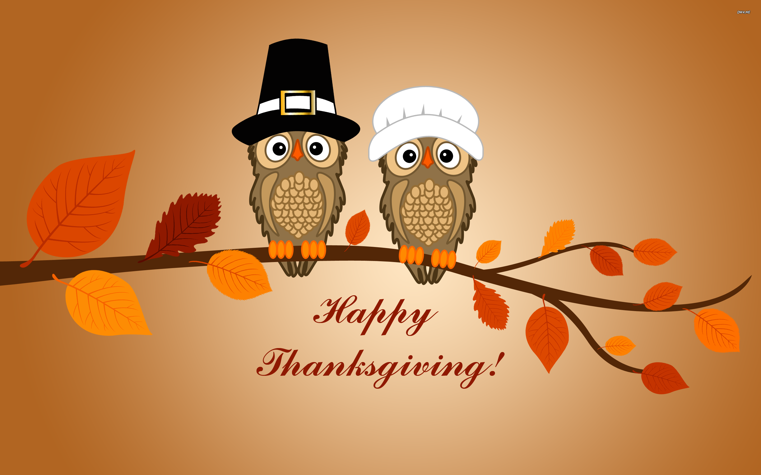 Happy Thanksgiving wallpaper   1009329 2880x1800
