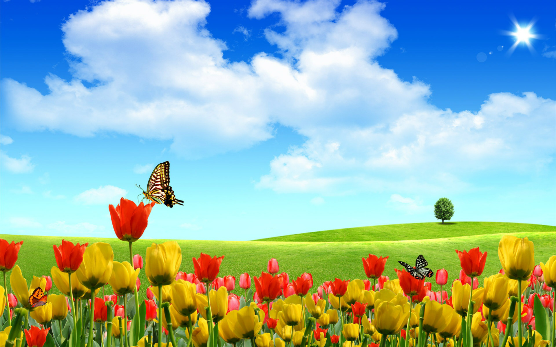 Cute Spring Wallpaper Cute spring wallpaper 1920x1200