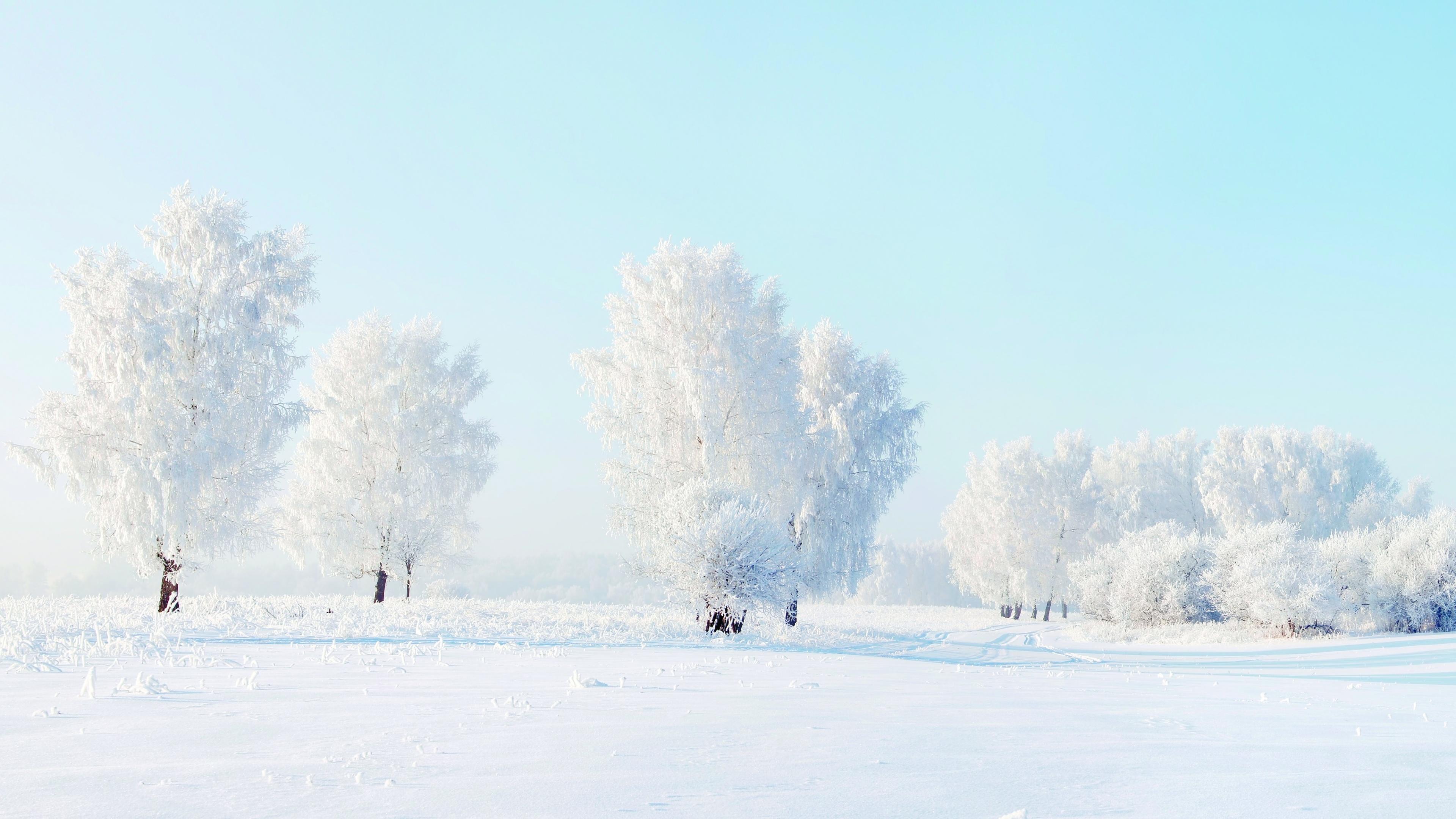 Winter Snow Pictures Wallpaper - WallpaperSafari