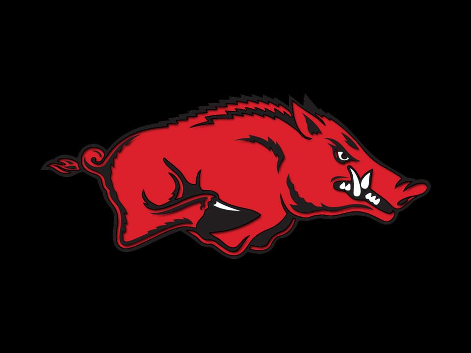 Razorback Computer Wallpaper Wallpapersafari HD Wallpapers Download Free Images Wallpaper [1000image.com]
