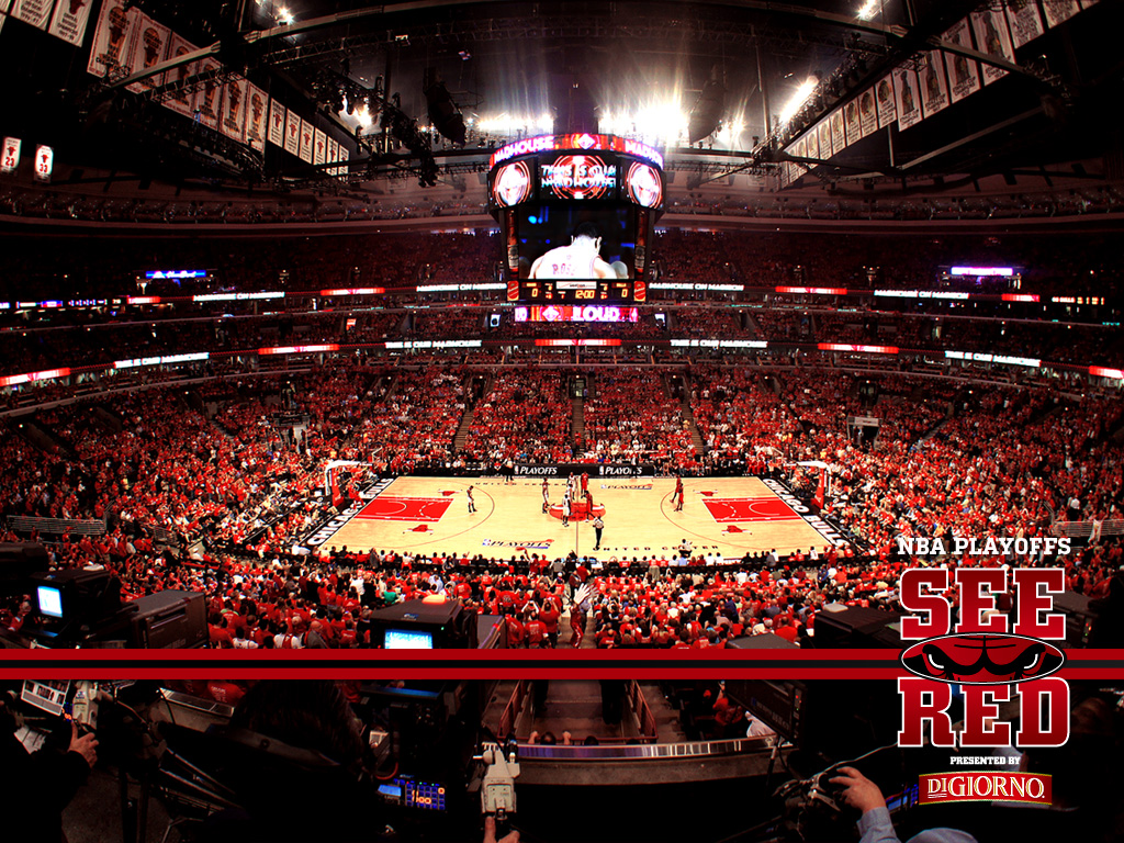 2012 Playoffs See Red Wallpaper Chicago Bulls 1024x768