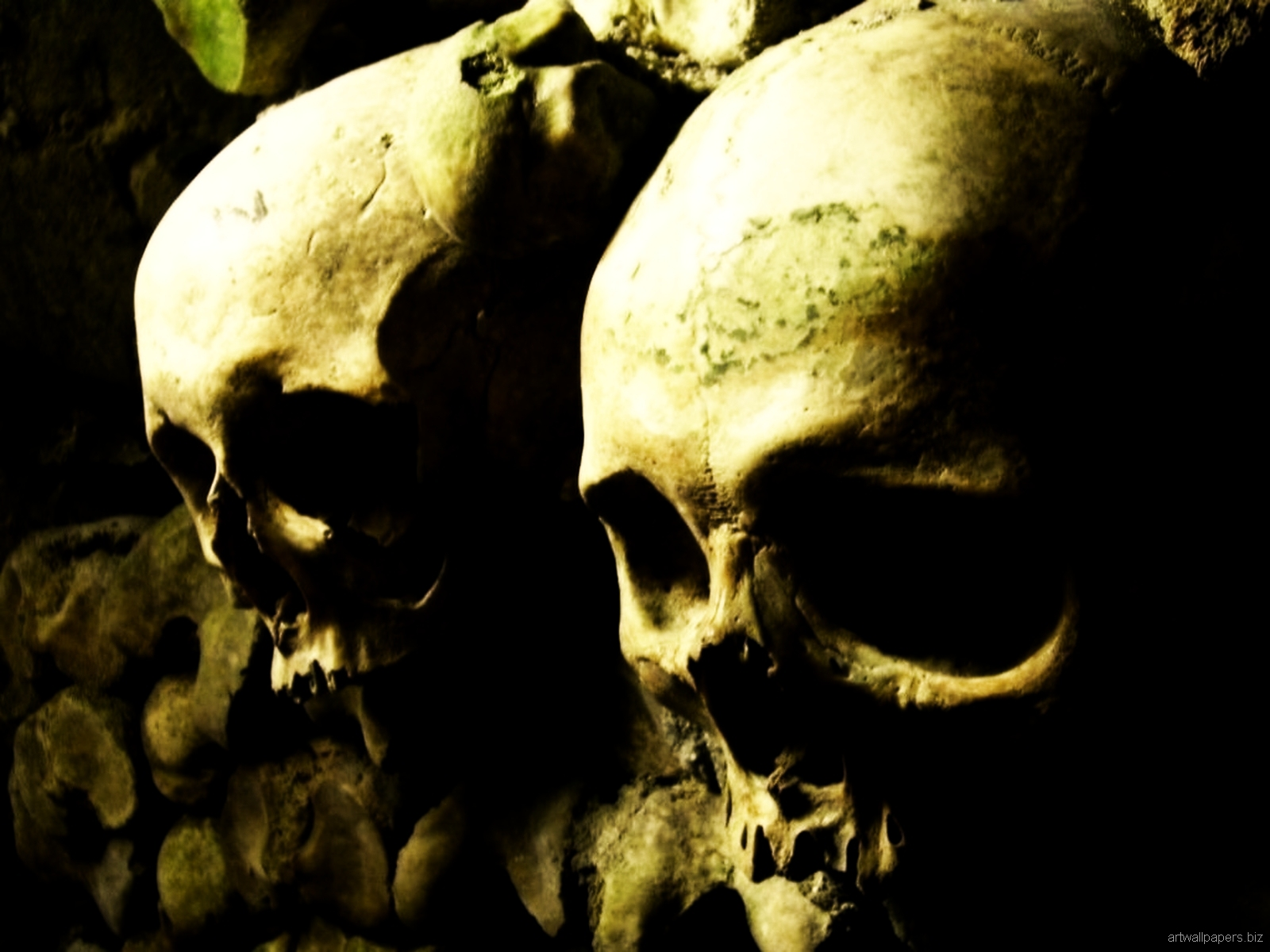 skull computer wallpaper   wwwhigh definition wallpapercom 1600x1200