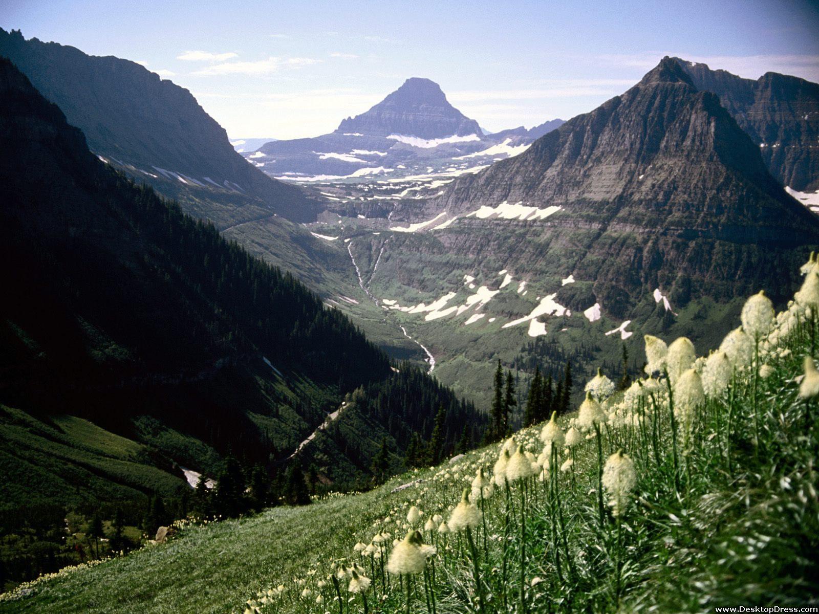 glacier national park montana mount reynolds glacier national park 1600x1200