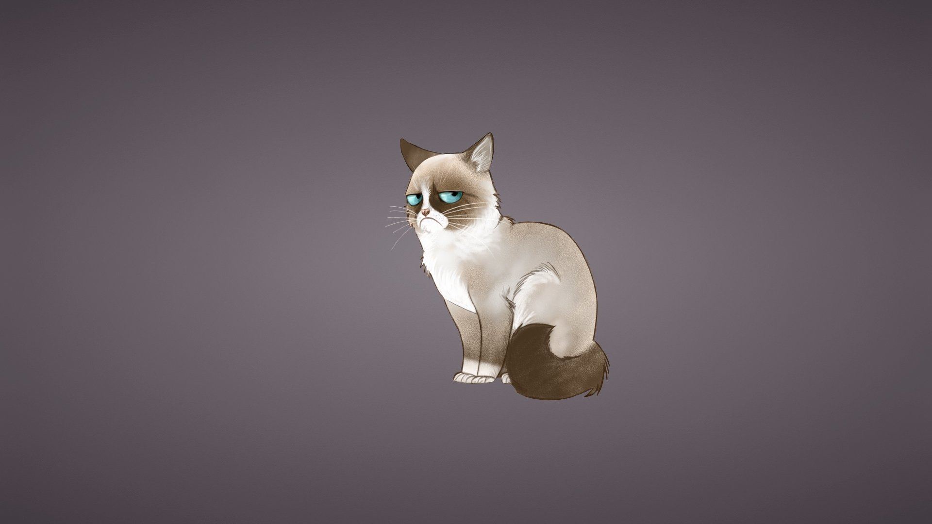 Download Grumpy Cat wallpaper 1920x1080