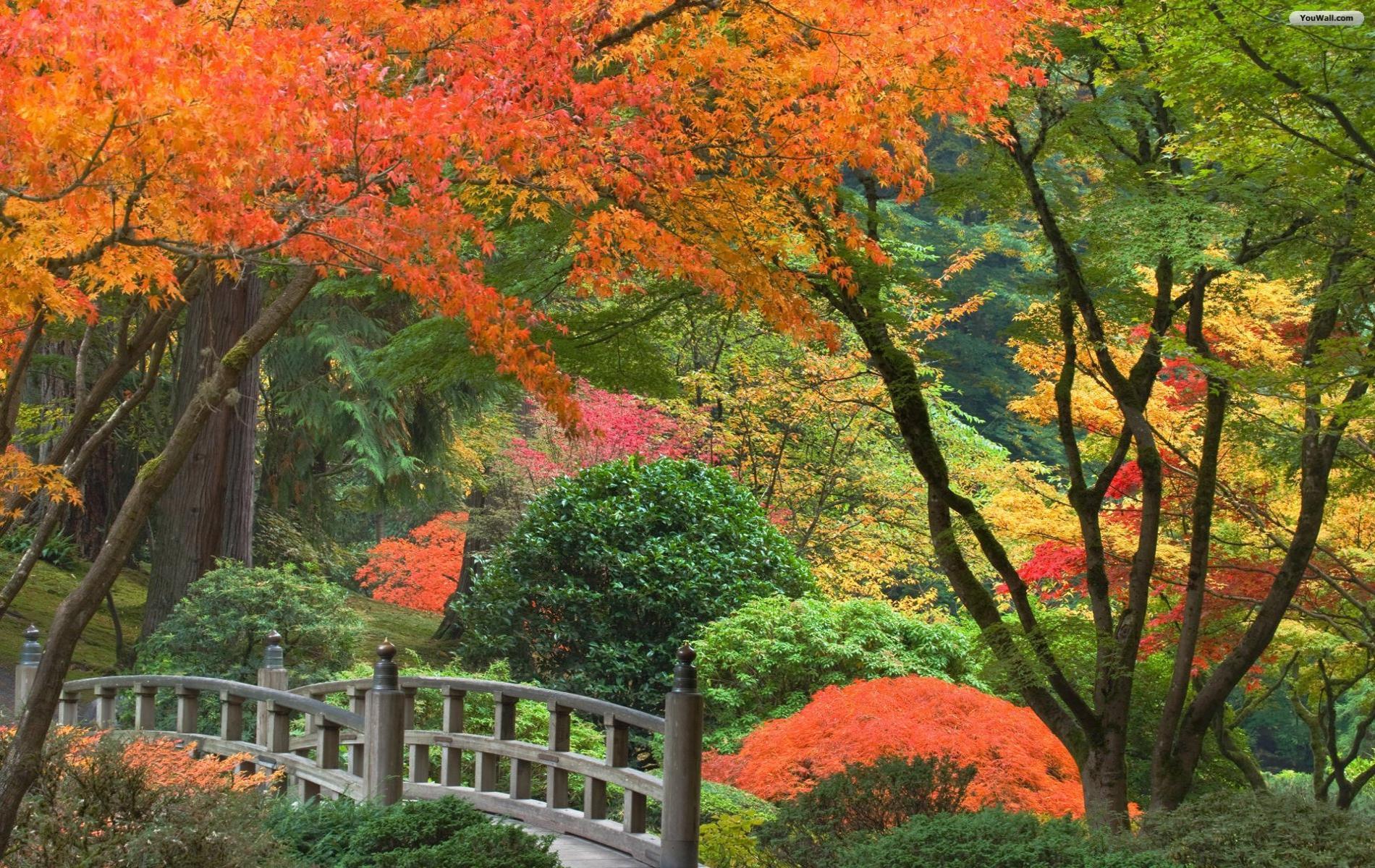 Japanese Garden Wallpaper   wallpaperwallpapersfree wallpaper 1900x1200