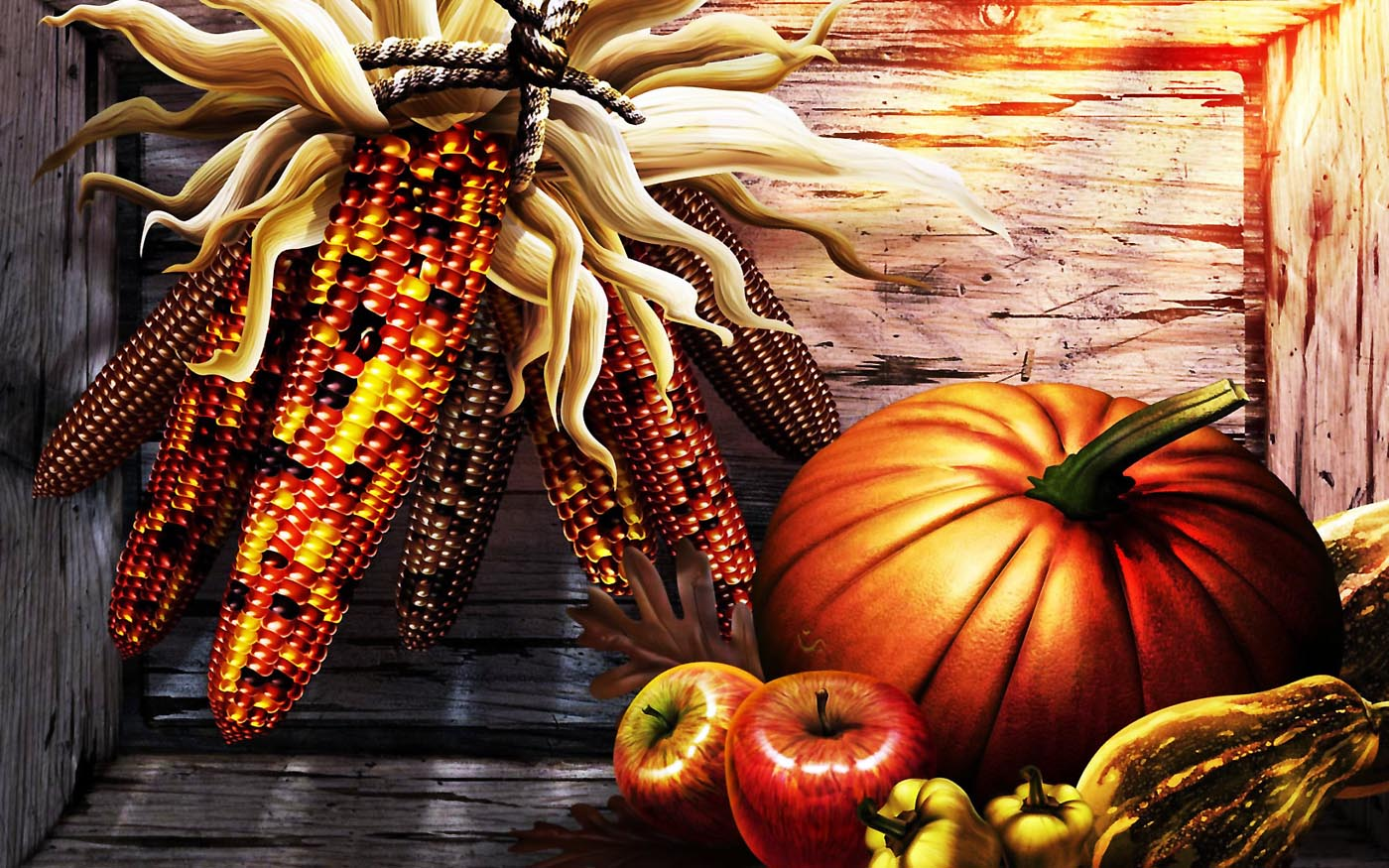 Thanksgiving Wallpaper LOLd Wallpaper   Funny Pictures   Funny 1400x875