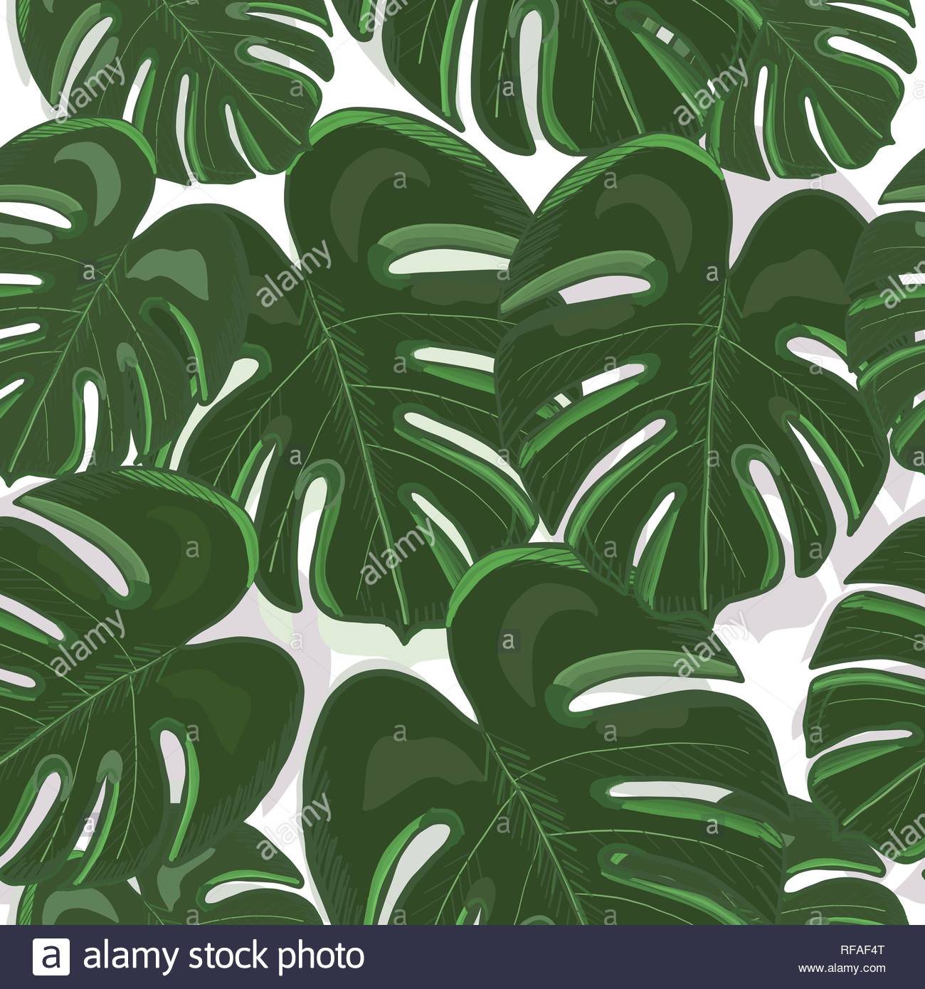 Tropical colorful monstera leaves background Hand drawn tropic 1300x1390