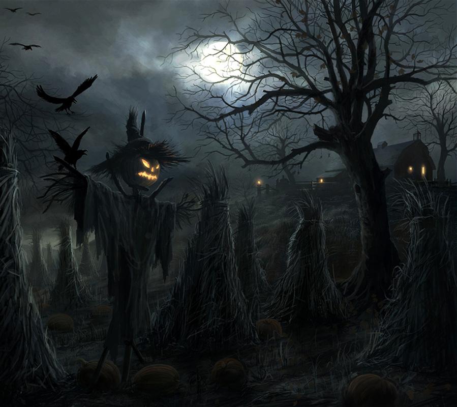 Full Halloween HD Wallpapers Download Desktop Backgrounds 899x800