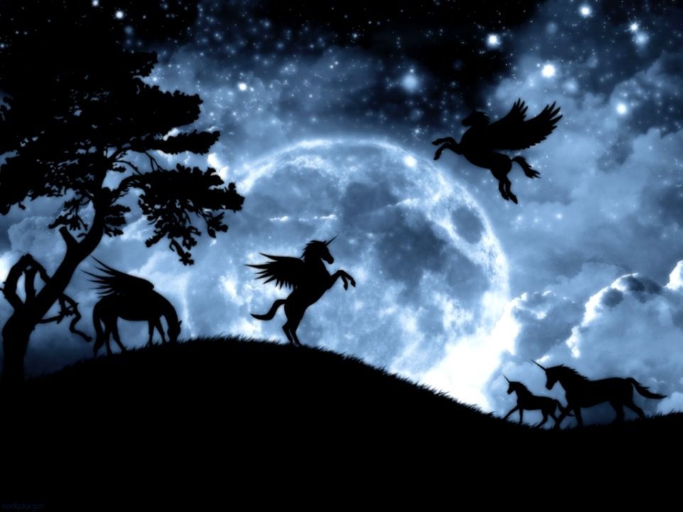 Fantasy Unicorn Wallpapers Hd Eazy Wallpapers 962x721