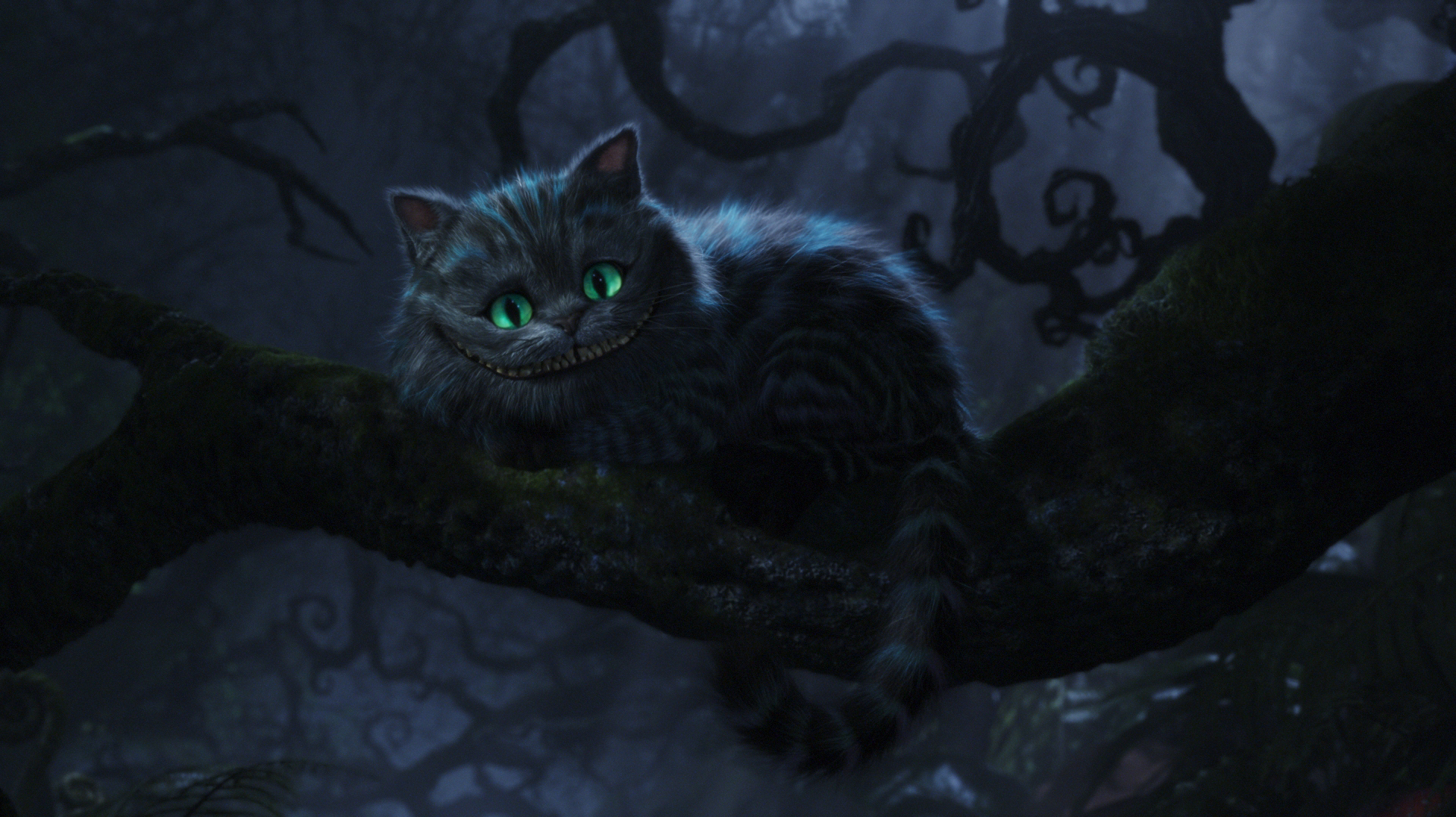 Cheshire Cat   The Cheshire Cat Photo 13042761 1920x1078