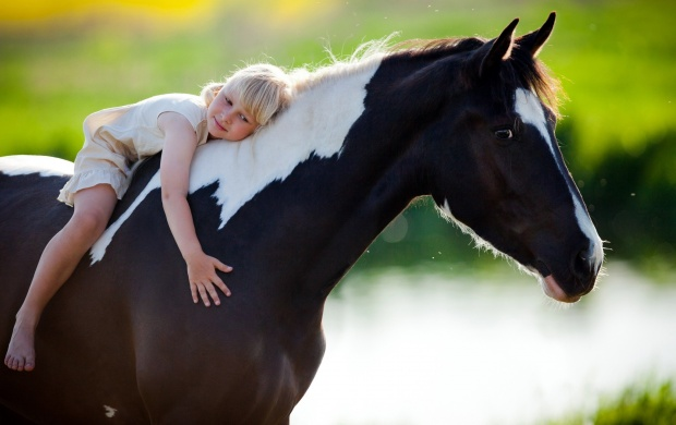 Child Sits On A Horse click to view 620x390