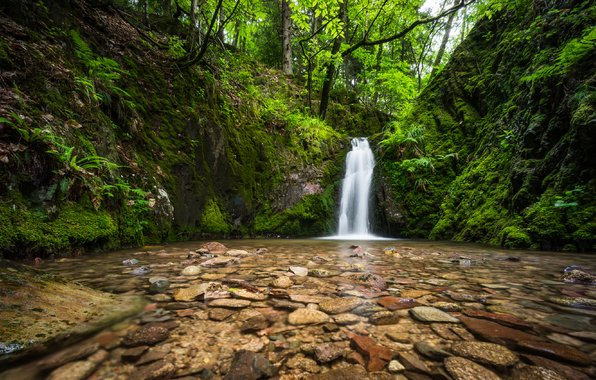 Wallpaper black forest germany black forest germany waterfall 596x380