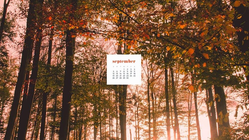 September 2021 wallpapers 35 FREE calendars for desktop and phones 1000x563