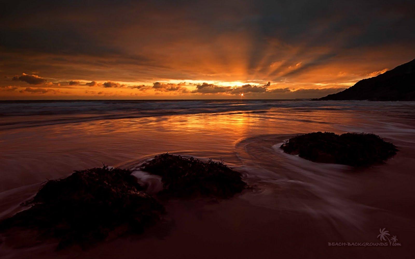 Ocean sunset wallpaper HD Desktop Backgrounds 1600x1000