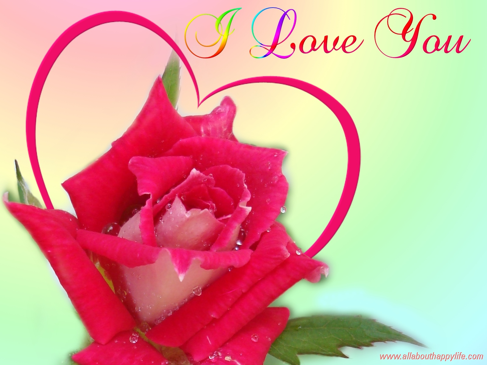 I Love You Hd wallpaper for download