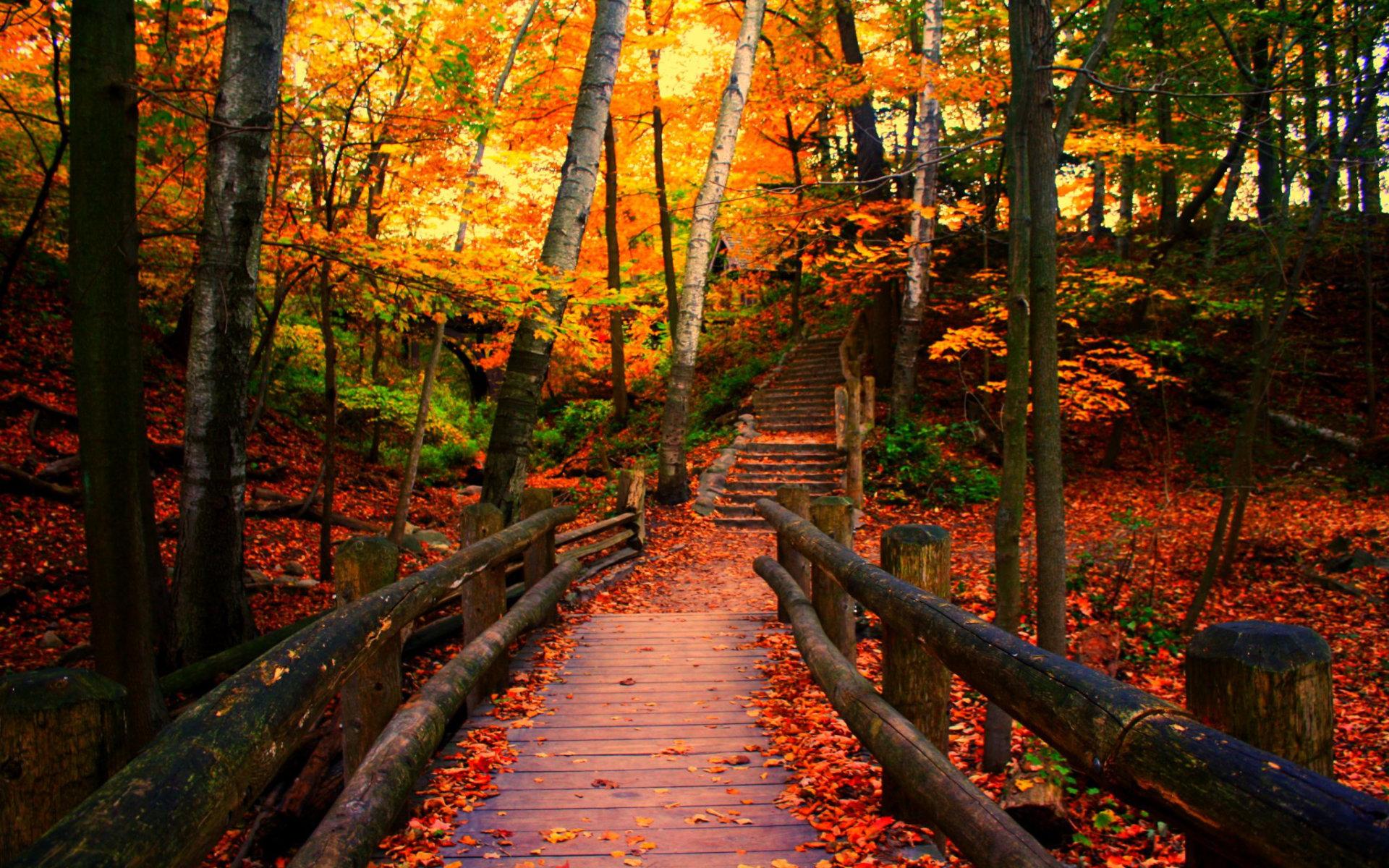 Autumn In Wisconsin wallpaper   ForWallpapercom 1920x1200